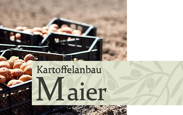 Kartoffelanbau Maier